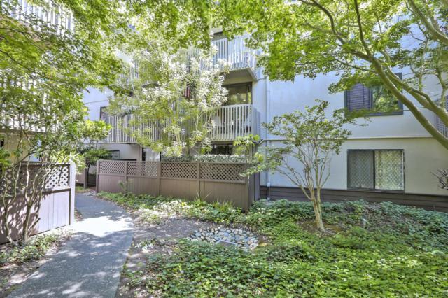 1246 Shelter Creek Ln, San Bruno, CA 94066 (#ML81719174) :: The Kulda Real Estate Group