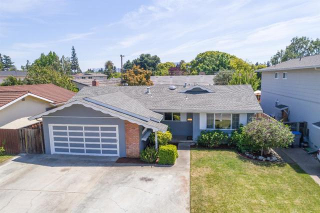 2488 Stokes St, San Jose, CA 95128 (#ML81719239) :: The Kulda Real Estate Group