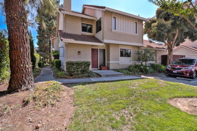 5222 Adalina Ct, San Jose, CA 95124 (#ML81719277) :: Intero Real Estate