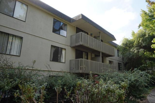 5303 Shelter Creek Ln, San Bruno, CA 94066 (#ML81719350) :: The Kulda Real Estate Group