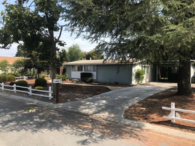 19041 Dagmar Dr, Saratoga, CA 95070 (#ML81719375) :: The Kulda Real Estate Group