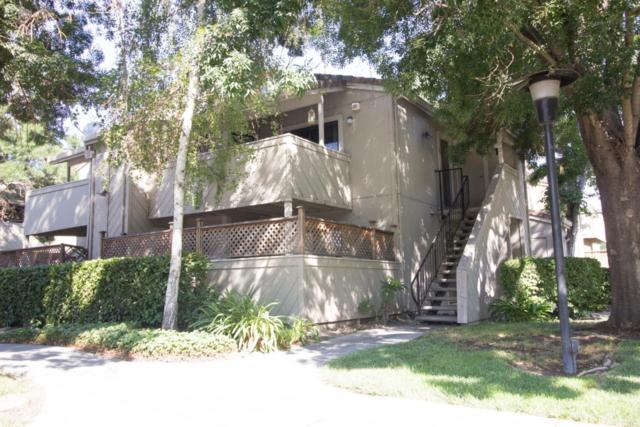 649 Yolo Ct, San Jose, CA 95136 (#ML81719615) :: Julie Davis Sells Homes