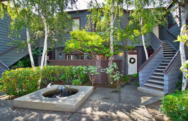 1013 Shoreline Dr, San Mateo, CA 94404 (#ML81719714) :: Julie Davis Sells Homes