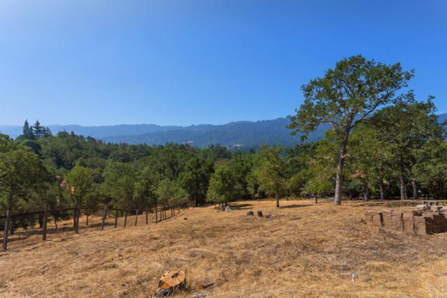 167 Ramoso Rd, Portola Valley, CA 94028 (#ML81719718) :: The Goss Real Estate Group, Keller Williams Bay Area Estates