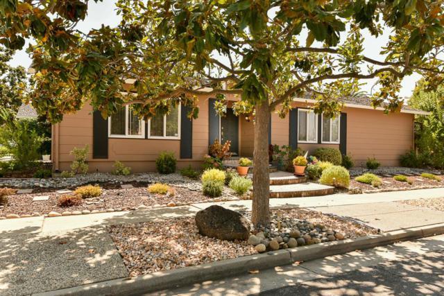 6659 Winterset Way, San Jose, CA 95120 (#ML81719870) :: RE/MAX Real Estate Services