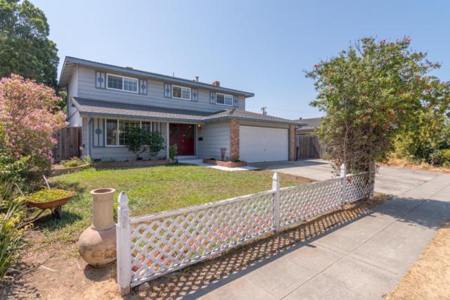 1664 Jacob Ave, San Jose, CA 95124 (#ML81719872) :: RE/MAX Real Estate Services