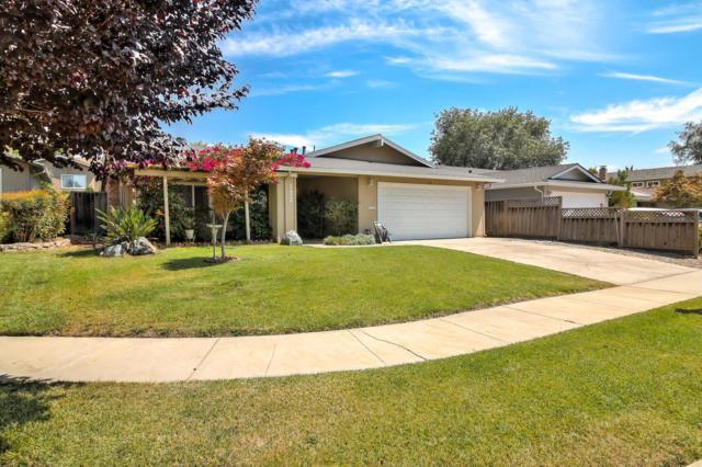 132 Farnham Ct, San Jose, CA 95139 (#ML81719879) :: The Warfel Gardin Group