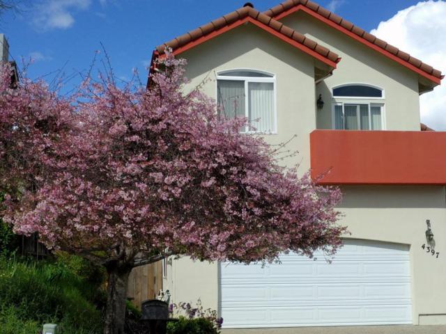 4397 Mills Ln, Soquel, CA 95073 (#ML81719904) :: RE/MAX Real Estate Services