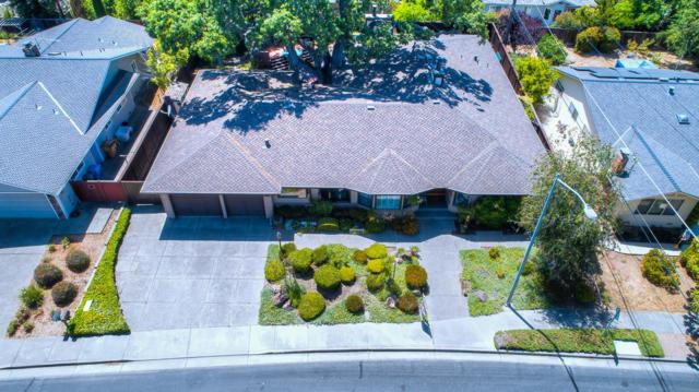 10089 Oakleaf Pl, Cupertino, CA 95014 (#ML81719921) :: RE/MAX Real Estate Services