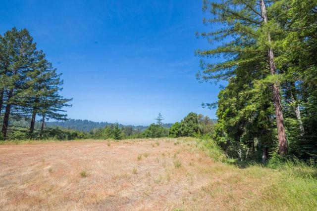 0 Mountain View Rd, Santa Cruz, CA 95065 (#ML81720003) :: The Goss Real Estate Group, Keller Williams Bay Area Estates