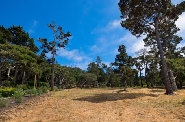 53A Riley Ranch Rd, Carmel, CA 93923 (#ML81720434) :: Strock Real Estate