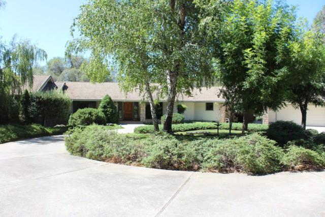 19324 Iron Mountain Dr, Grass Valley, CA 95949 (#ML81720984) :: The Kulda Real Estate Group