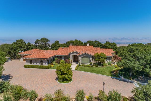 3000 San Juan Canyon Rd, San Juan Bautista, CA 95045 (#ML81720997) :: Julie Davis Sells Homes