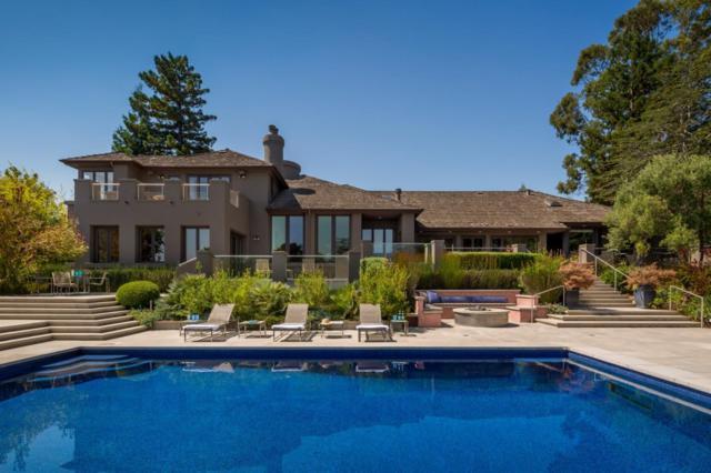 20 Santa Gina Ct, Hillsborough, CA 94010 (#ML81721423) :: The Gilmartin Group