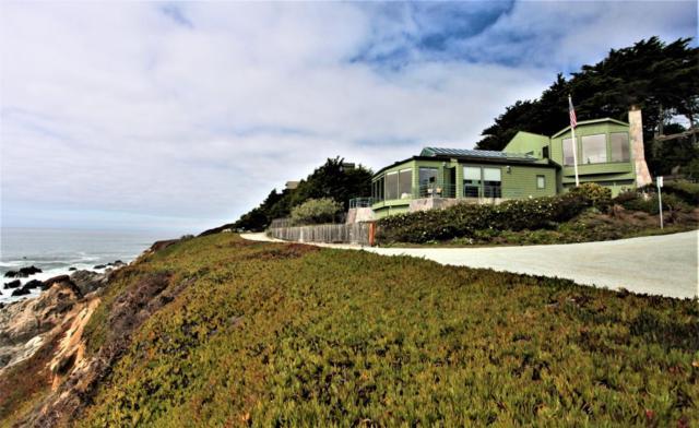 101 Niagra Ave, Moss Beach, CA 94038 (#ML81721661) :: The Kulda Real Estate Group