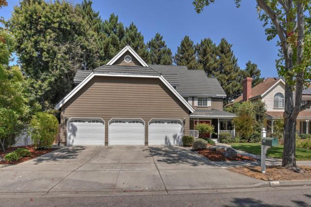 538 Sullivan Dr, Mountain View, CA 94041 (#ML81722261) :: Strock Real Estate