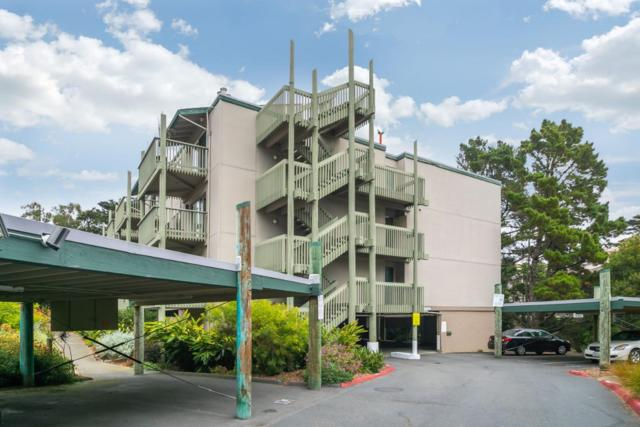391 Mandarin Dr 307, Daly City, CA 94015 (#ML81722288) :: The Kulda Real Estate Group