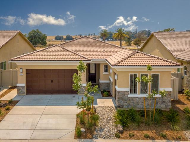 2217 Via Cavallo, Oakdale, CA 95361 (#ML81722569) :: Strock Real Estate