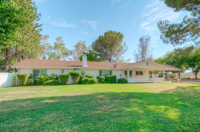 19105 Ridge Rd, Red Bluff, CA 96080 (#ML81722734) :: Julie Davis Sells Homes