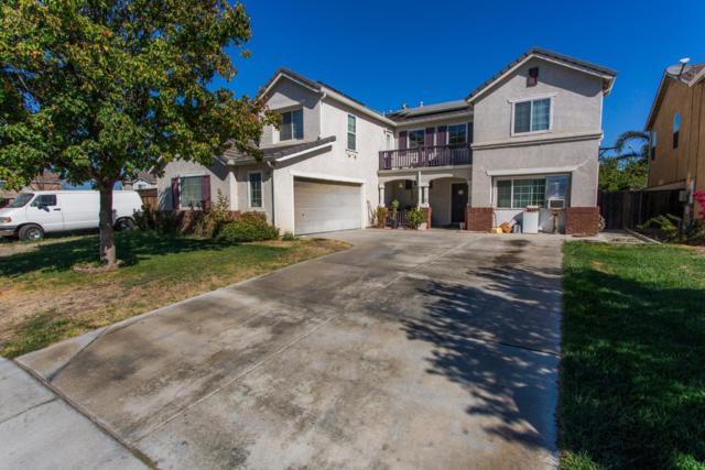 2546 Canvasback Dr, Los Banos, CA 93635 (#ML81722822) :: Brett Jennings Real Estate Experts