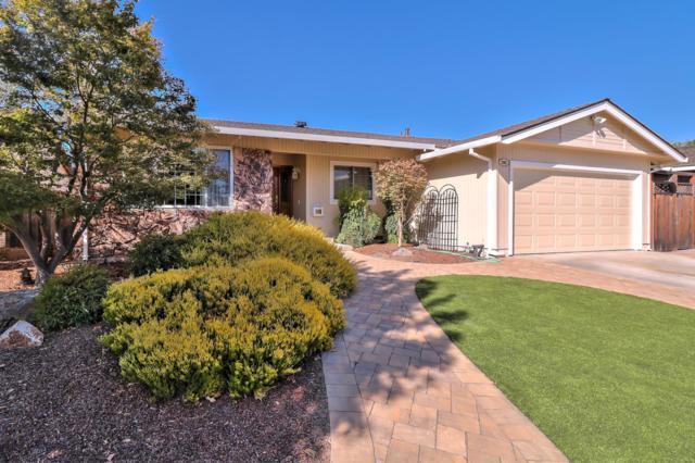 285 Omira Dr, San Jose, CA 95123 (#ML81723090) :: Intero Real Estate