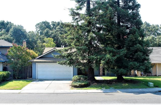 3068 Burl Hollow Dr, Stockton, CA 95209 (#ML81723211) :: The Goss Real Estate Group, Keller Williams Bay Area Estates