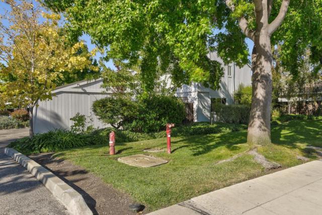 1920 Rock St 1, Mountain View, CA 94043 (#ML81723269) :: The Goss Real Estate Group, Keller Williams Bay Area Estates