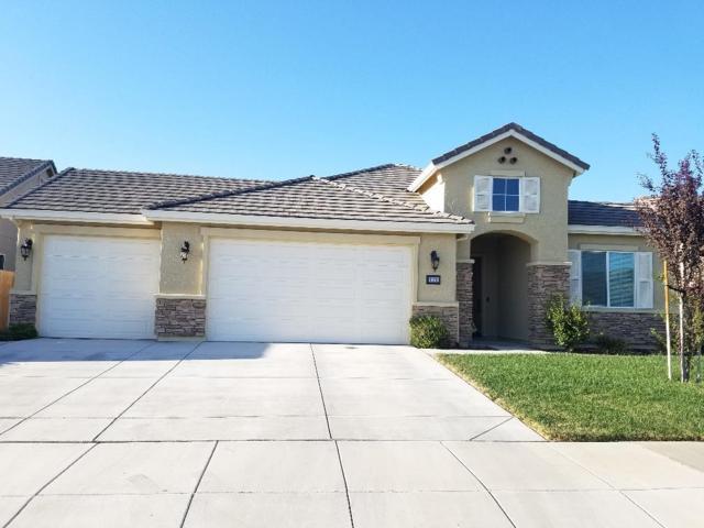 1170 Obsidian Ct, Los Banos, CA 93635 (#ML81723374) :: Brett Jennings Real Estate Experts