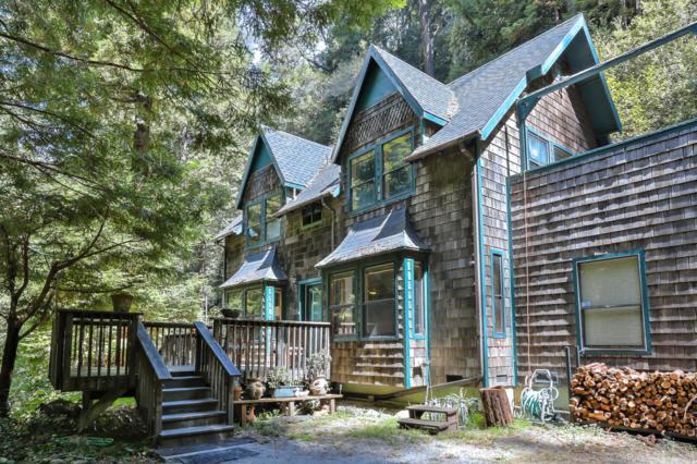 7217 Pescadero Creek Rd, Pescadero, CA 94060 (#ML81723405) :: The Goss Real Estate Group, Keller Williams Bay Area Estates