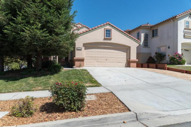 1033 Twin Creeks Dr, Salinas, CA 93905 (#ML81723575) :: The Goss Real Estate Group, Keller Williams Bay Area Estates