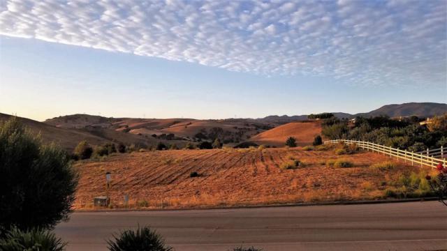 4115 Ashford Cir, Hollister, CA 95023 (#ML81723687) :: Julie Davis Sells Homes