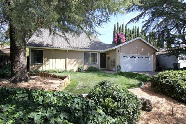 6168 Glen Harbor Dr, San Jose, CA 95123 (#ML81723804) :: The Warfel Gardin Group