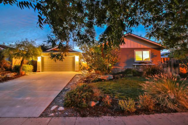 5343 Lenora Ave, San Jose, CA 95124 (#ML81723959) :: The Warfel Gardin Group