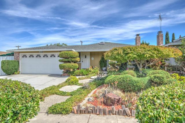 1146 S Stelling Rd, Cupertino, CA 95014 (#ML81723970) :: The Warfel Gardin Group