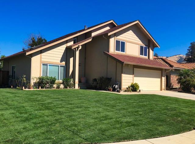 3105 Vermilion Ct, San Jose, CA 95135 (#ML81724039) :: The Warfel Gardin Group