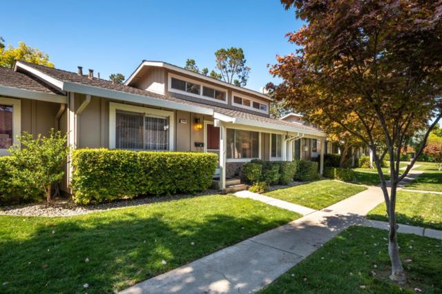 10126 English Oak Way, Cupertino, CA 95014 (#ML81724126) :: The Warfel Gardin Group