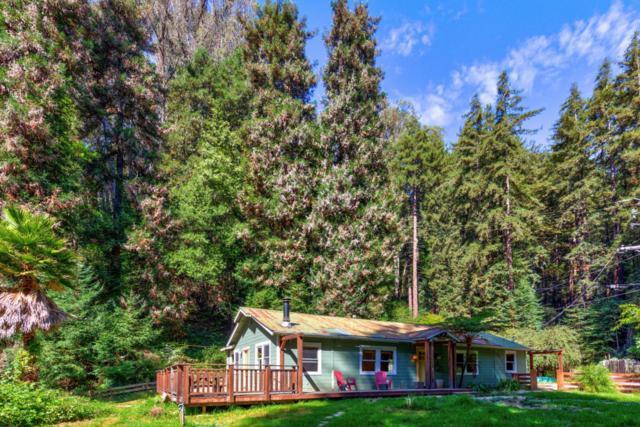 735 Mystery Spot Rd, Santa Cruz, CA 95065 (#ML81724162) :: The Goss Real Estate Group, Keller Williams Bay Area Estates