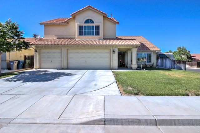 530 Winemaker St, Los Banos, CA 93635 (#ML81724243) :: Brett Jennings Real Estate Experts