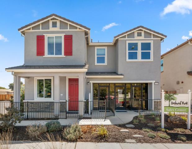 1221 Buena Vista Rd, Hollister, CA 95023 (#ML81724369) :: The Goss Real Estate Group, Keller Williams Bay Area Estates