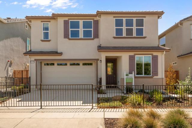 1227 Buena Vista Rd, Hollister, CA 95023 (#ML81724378) :: Strock Real Estate