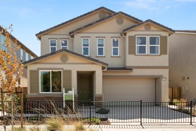 1233 Buena Vista Rd, Hollister, CA 95023 (#ML81724391) :: Strock Real Estate