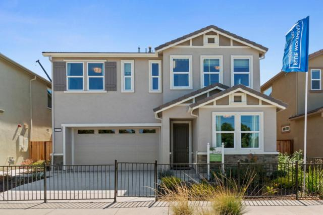 1239 Buena Vista Rd, Hollister, CA 95023 (#ML81724401) :: Strock Real Estate