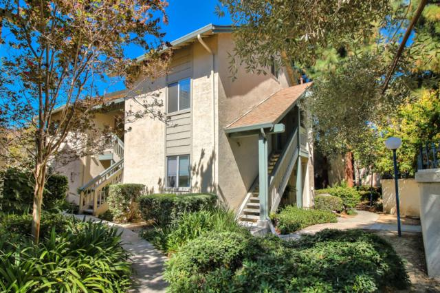 1068 Summershore Ct, San Jose, CA 95122 (#ML81724419) :: The Gilmartin Group
