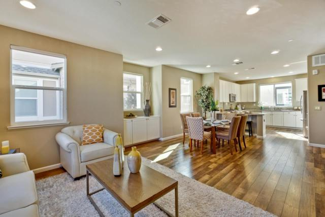 1338 Shore Dr, San Jose, CA 95131 (#ML81724511) :: Strock Real Estate