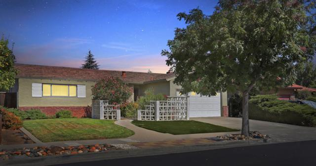 1185 Paula Dr, Campbell, CA 95008 (#ML81724562) :: Intero Real Estate