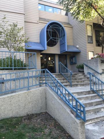 35 W 20th Ave 214, San Mateo, CA 94403 (#ML81724596) :: Brett Jennings Real Estate Experts
