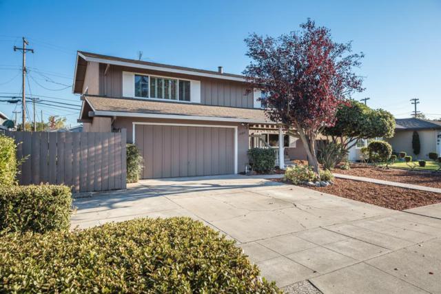 1592 Jacob Ave, San Jose, CA 95118 (#ML81724623) :: Intero Real Estate