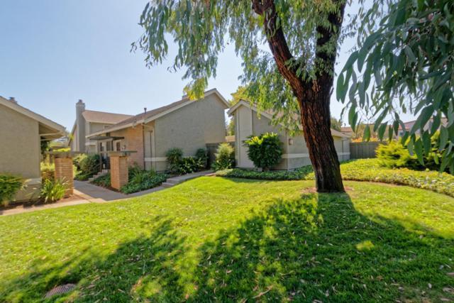1339 Star Bush Ln, San Jose, CA 95118 (#ML81724654) :: Intero Real Estate