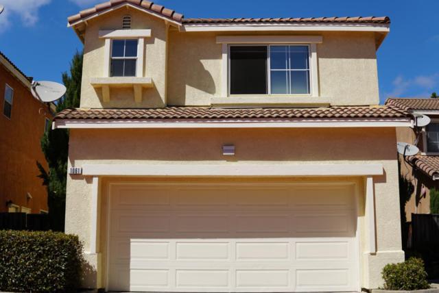 115 Cantana Ter, Union City, CA 94587 (#ML81724682) :: Intero Real Estate