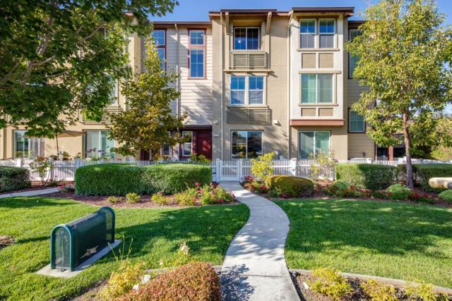 246 Peppermint Tree Ter 4, Sunnyvale, CA 94086 (#ML81724715) :: Intero Real Estate